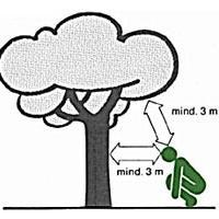 GewitterstimmungGewitterstimmungVerhalten bei Gewitter - einzel stehende Bäume meiden